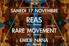 2012.11.17_Reas_Ruche